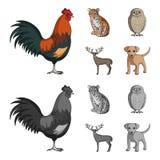 Hahn, Tiger, Rotwild, Eule und andere Tiere Tiere stellten Sammlungsikonen in der Karikatur, einfarbiger Artvektor-Symbolvorrat e Lizenzfreies Stockbild