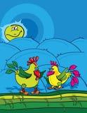 Hahn und Huhn Stockfotos