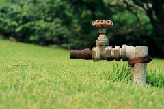 Hahn-Wasser vom Hahnwasserventil, Schieber im grünen Garten lizenzfreie stockfotos