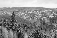 Hahnenklee (Harz, Duitsland) - in de winter royalty-vrije stock foto's