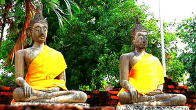 Hai Buddha Golden Statue Buddha stock video