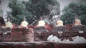 Hai Buddha Golden Statue Buddha stock footage