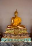 Hai Buddha Golden Statue Buddha staty i Thailand Arkivfoto