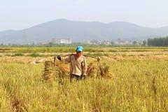 HAI DUONG, WIETNAM, Październik, 26: Niezidentyfikowany mężczyzna przynosi ryżową babeczkę Obrazy Stock