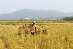 HAI DUONG, WIETNAM, Październik, 26: Niezidentyfikowany mężczyzna przynosi ryżową babeczkę Obraz Royalty Free