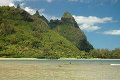 hai Kauai de balai Photos stock