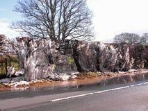 Haies glaciales d'hiver dans la campagne de Herefordshire Photo stock