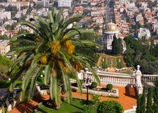 Haifa bahai garden Royalty Free Stock Image