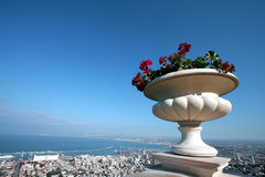 Haifa City Israel. Overview of Haifa city in Israel, with plant in pot in foreground Royalty Free Stock Photography