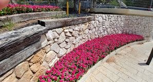 Haifa - nordlig huvudstad Arkivfoto