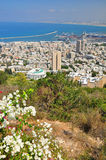 Haifa. Stock Photography