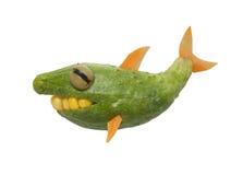 Haifisch gemacht von der Gurke lizenzfreies stockfoto