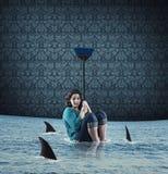 Haifisch im Haus Lizenzfreie Stockbilder