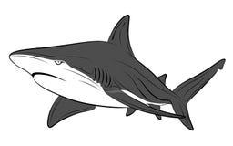 Haifisch, Tätowierung stock abbildung