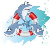 Haifischband Lizenzfreie Stockfotos