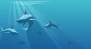 haifische vektor abbildung