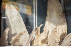 Haifischflossen auf Anzeige Stockfoto