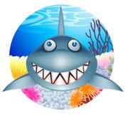 Haifischkarikatur Stockfotos