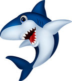 Haifischkarikatur Lizenzfreies Stockbild