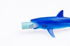 Haifischspielzeug und -geld Lizenzfreies Stockfoto