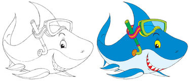 Haifischtaucher Stockfotografie