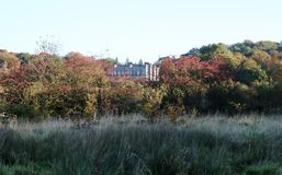 Haigh Hall in Wigan, Lancashire. Haigh Hall peeping through the trees in Haigh Country Park, Wigan Stock Photo