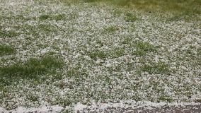 Hail falling on green grass stock video footage