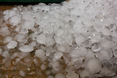 Hail after the hailstorm Stock Photo