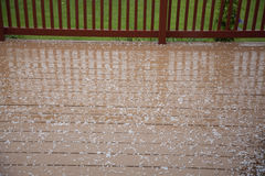 Hail pellets on wooden deck Royalty Free Stock Photography