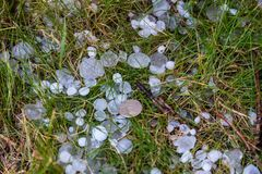 Hail the size of a five-ruble coin after a thunderstorm, Kaliningrad, Russia stock image