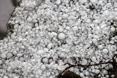 Hail sized with a larger coin, hailstones on the ground after hailstorm. Hailstones on the ground after hailstorm, hail of great size, hail sized with a larger royalty free stock photo