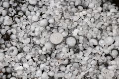 Hail sized with a larger coin, hailstones on the ground after hailstorm, hail of great size Stock Image