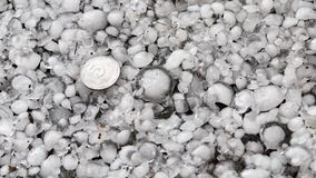 Hailstones on the ground after hailstorm, hail of great size, hail sized with a larger coin stock images