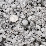 Hailstones on the ground after hailstorm, hail of great size, hail sized with a larger coin stock photos