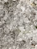 Hail stones. On the floor after the storm in johannesburg,South Africa Royalty Free Stock Photo