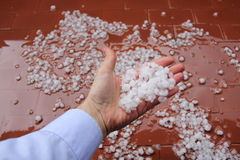 Hailstones on hand. Royalty Free Stock Images