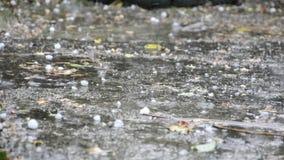Hailstones on the pavement stock video