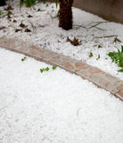 Hailstorm in the garden Royalty Free Stock Images