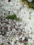 Hailstorm Stock Photos