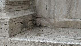 Hailstorm on marble in summer in Rome. Italy stock video footage