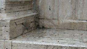 Hailstorm op marmer in de zomer in Rome stock videobeelden