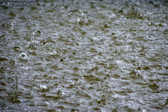 Hailstorm. The Photography of impacting hailstones in a body of water Stock Images