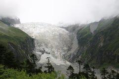 Hailuogou glacier Royalty Free Stock Photography