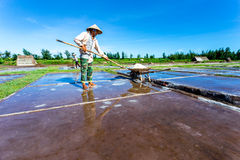 HAILY, NAMDINH, VIETNAM - AUGUST 10, 2014 - An unidentified woman shovelling salt into a one-wheeled cart. Royalty Free Stock Photography