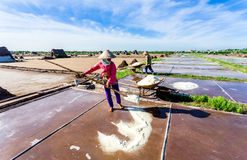 HAILY, NAMDINH, VIETNAM - AUGUST 10, 2014 - An unidentified woman shovelling salt into a one-wheeled cart. Stock Images