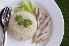 hainanese ρύζι κοτόπουλου Στοκ Εικόνα