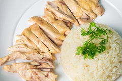 Hainanese boiled chicken rice on the wooden table Royalty Free Stock Images