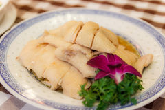Hainanese chicken. Top hit food in Singapore Stock Images
