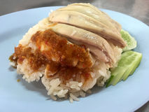 Hainanese chicken rice. Thai style Hainanese chicken rice Royalty Free Stock Photos