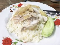 Hainanese chicken rice. Hainanese chicken rice in white dish Royalty Free Stock Photography